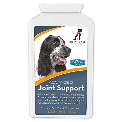 Hochentwickeltes Ergänzungsmittel zur Gelenkunterstützung bei Hunden – Huhngeschmack – 120 Tabletten – Natürliche Inhaltsstoffe mit menschlicher Qualitätsstufe – Enthält Glucosamin, Chondroitin,