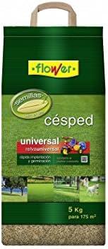 Flower 10784 - Semilla césped universal, 5 kg