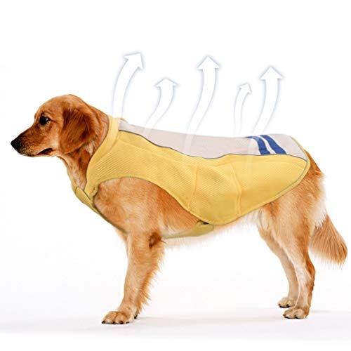 Petacc Chaleco de Refrigeración para Mascotas para Exteriores Arnés de Refrigeración Transpirable...