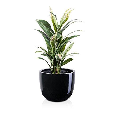 pot-de-fleurs-bottas-pot-de-fleurs-pot-de-fleurs-en-fibre-de-verre-couleur-noir-finition-brillante-r
