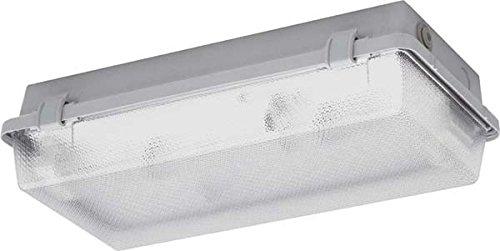 Tc Panel (Schuch Licht FR Diffusor Panel tc-s 2x 9-11W 164.211KL i)