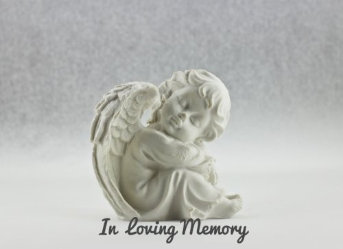 Home Funeral Management (In Loving Memory: Celebration Of Life, Condolence Book. Wake, Memorial Service, Church, Funeral Home Guest Book for Friends & Family to write in With Quotes, 90 Pages, 8.25x6in (Condolence Books))