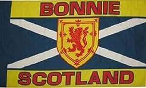 U24 Fahne Flagge Bonnie Scotland Schottland 90 x 150 cm