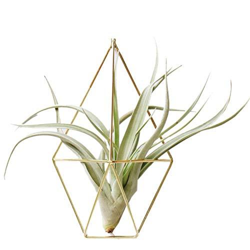 Korb Wohnzimmer Garten Geometrie Blumenständer Vase Wanddekoration Geometrische Metall Anhänger Blumentöpfe Wandregal Dekoration A4 ()