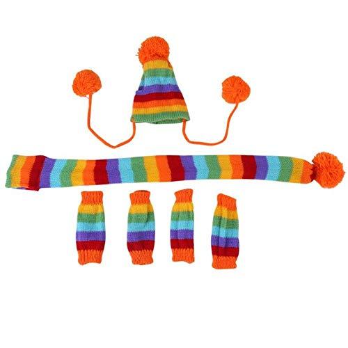 LTSAA 6 Teile/Satz Herbst Winter Hund Haustiere Hut + Schal + Beinlinge Nette Kleidung Kostüm Pet Kleidung Winter Günstige Pet Kleidung Für Hunde@Regenbogen_M (Nette Und Günstige Kostüm)