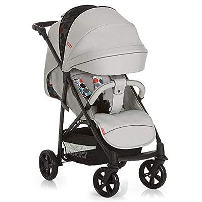 Fisher-Price Sportwagen Toronto 4 - Komfortabler Buggy Kinderwagen mit Liegefunktion, höhenverstellbarem Schieber und Sonnenverdeck   mit Babyschale kombinierbar - Grau