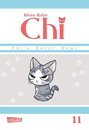 Kleine Katze Chi 11 -