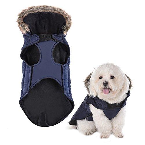 Yunt Winter Windfest Hunde Mantel Warme Daunenjacke Hundekleidung mit Kaputze für kleine Hunde Welpen Katzen Pet Dog Cat Overcoat Rot/Navy S/M/L