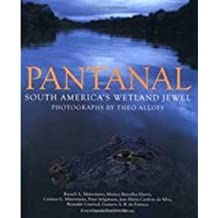 Pantanal: South America's Wetland Jewel