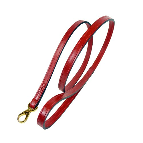 hartman-and-rose-gold-snap-collars-harnesses-leads-1-2-inch-ferrari-red