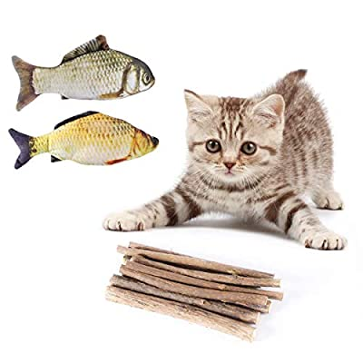 AIEVE Catnip Sticks for Cats,10 Pack Matatabi Cat Chew Sticks Teeth Grinding Chew Toys Cat Molar Toothpaste Stick for Teeth Cleaning with 2 Pack Catnip Fish Toys for Cats Kitten Kitty Pets(12 Pack) from AieveDirect