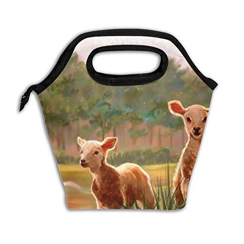 Bidetu Lambs Lunch Bag Isolierte Lunchbox Wiederverwendbare Lunch Tote Organizer-Kühltasche Lunch Bags für Frauen, Männer und Kinder Erwachsene (Lunch-box Molle)