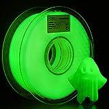 AMOLEN PLA Filamento Impresora 3D, 1.75mm Glow in the Dark Verde 1KG,+/- 0.03mm Materiales de impresión 3D de filamento, incluye Muestra Shining Púrpura Filamento.