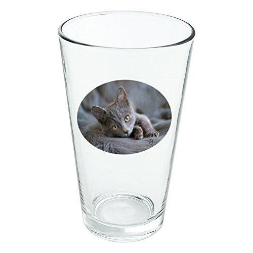 Gris Domestic Shorthair fourrure de chat fantaisie 453,6 gram Pinte à boire en verre trempé