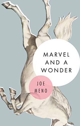 Marvel and a Wonder (English Edition) eBook: Joe Meno: Amazon.es ...