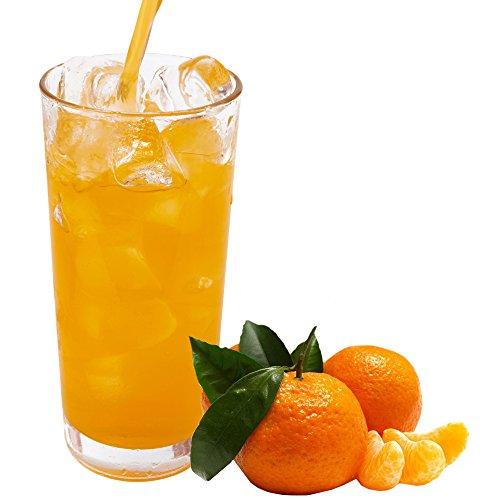 Mandarine Geschmack extrem ergiebiges Getränkepulver für Isotonisches Sportgetränk Energy-Drink ISO-Drink Elektrolytgetränk Wellnessdrink