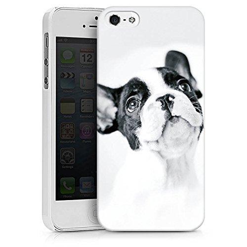 Apple iPhone SE Silikon Hülle Case Schutzhülle Hund Bulldogge Dog Hard Case weiß
