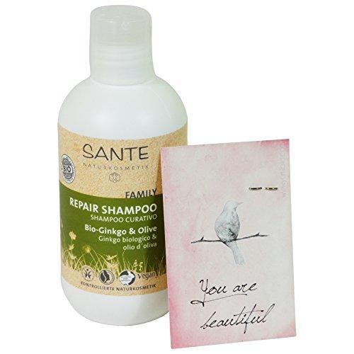sante-shampoo-werkstatt-heilkrafte-der-ginkgo-und-ol-von-olive-vegan-lactosefrei-glutenfrei-