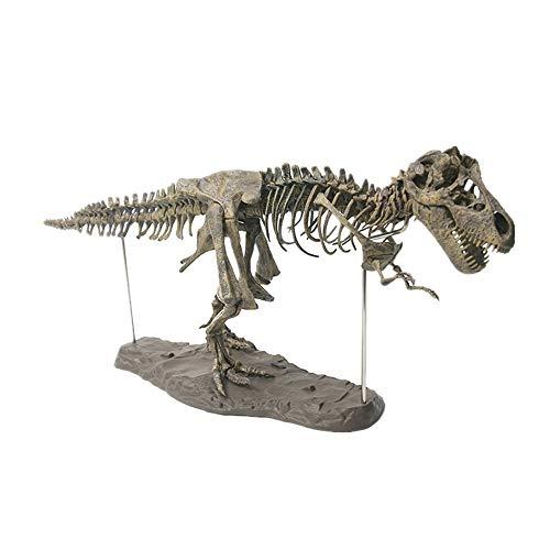 ZKPMJH Dinosaurier 4D - Zusammengebaute Tiermodellanordnung Für Tyrannosaurus Rex Fossil Skeleton Statuen