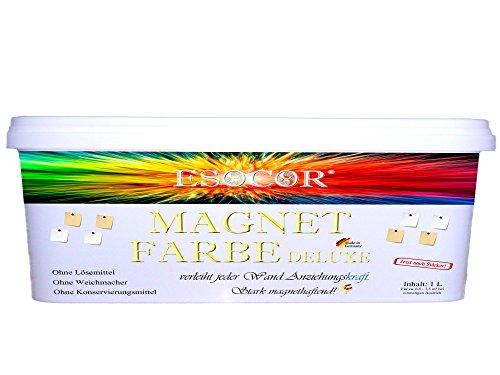 neu-jetzt-noch-starker-1-liter-esocorr-magnetfarbe-deluxe-5-neodym-test-magnete-gratis-verleiht-jede