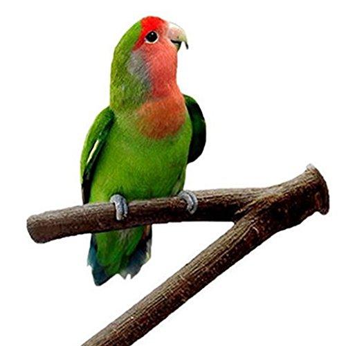 Namgiy Juguete de Juguete para Pájaros o Pájaros, para Pájaros, Loro, Cacatúa, Jaula de...