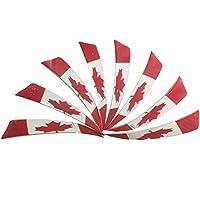 30 piezas Tiro con arco de caza Plumas de flecha 4 pulgadas 6 colores (model 4)