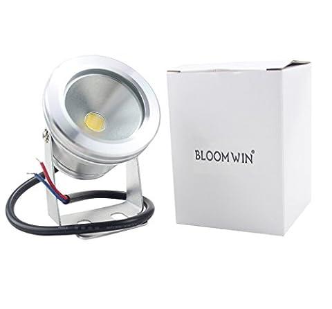 Bloomwin - LED Spot Projecteur Etanche IP68 Blanc Chaud en Aluminium pour Piscine Jardin Bassin (Réf: L0149)