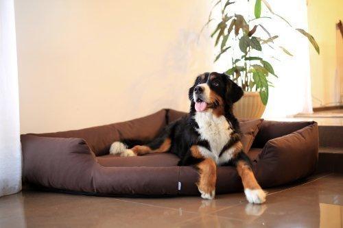 Bild von: tierlando TR5-01 Hundebett TRIVIA Eckbett Eckhundebett Hundesofa Hundebett Gr. XL 120cm Braun