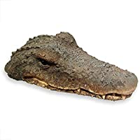 Whole House Worlds Floating Crocodile Head, Garden Art or Decoy for Water, Pools and Ponds, 32 cm long, plastic