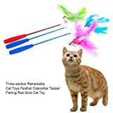 Tartiery Funny Cat Stick Canna da Pesca a Tre Pezzi Retrattile e Divertente per Gatti Giocattolo Durevole e Non tossico per Giocare con i Gatti e Migliorare l'interazione Convenient