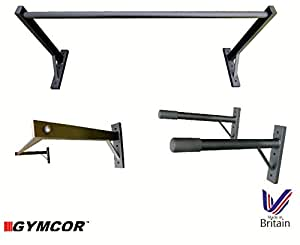 Gymcor Commercial Wall Mounted Pull Up Bar And Dip Bars