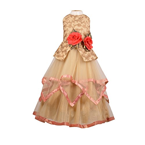 Aarika Girl's Flower Applique Layered Party Wear Gown (G-512-FAWN_36_13-14 Years)