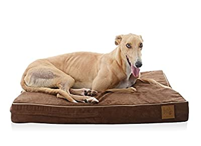 LaiFug Orthopedic Memory Foam Pet/Dog Bed with Durable Water Proof Liner and Removable Designer Washable Cover