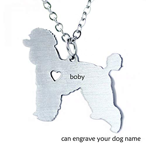 LIUSHUGUANG Kann Brennen Hundenamen Haustier Schmuck Edelstahl Schmuck Hund Mops-Hund Halskette Benutzerdefinierte Edelstahl Schmuck,Silver