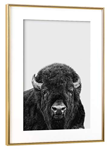artboxONE Poster mit Rahmen Gold 75x50 cm Bison, Buffalo von MIUUS Studio - gerahmtes Poster -