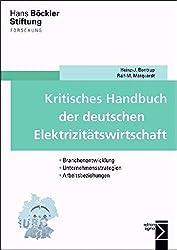 Kritisches Handbuch der deutschen Elektrizitätswirtschaft: Branchenentwicklung - Unternehmensstrategien - Arbeitsbeziehungen (Forschung aus der Hans-Böckler-Stiftung)