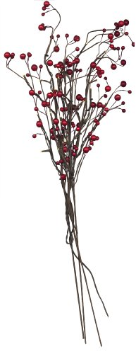 best-season-led-weidenzweig-berry-branch-mit-24-warmweiss-led-mit-trafo-circa75-cm-x-5-25-cm-braun-m