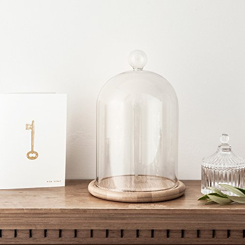 large-glass-cloche-bell-jar-dome-with-bamboo-tray-by-lights4fun