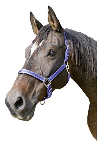 Kerbl Halfter Mustang 2-Fach verstellbar, Blau/Schwarz, 2, 321967