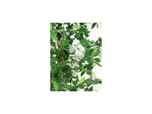 EUROPALMS Goldregenbaum weiß Zementfuß 180cm, Kunstpflanze