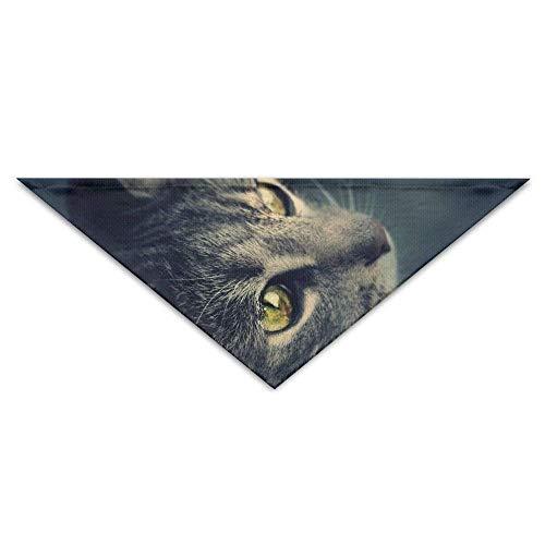t Cat Artwork Hund Bandanas Schals Dreieck Lätzchen Schals Mode Basic Halstuch ()