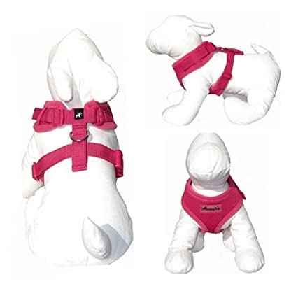 IPuppyone Adjustable Dog Soft Harness Crazy Daisy Size:Small Color:Purple 4