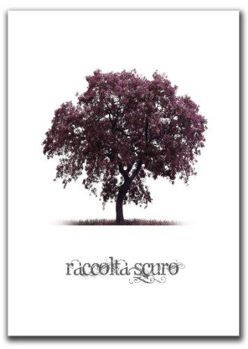 Raccolta Berenson by Franco Russoli - AbeBooks