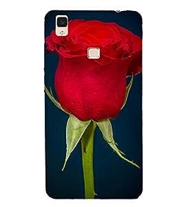 Blooming RED Rose Depicting Nature 3D Hard Polycarbonate Designer Back Case Cover for vivo V3Max