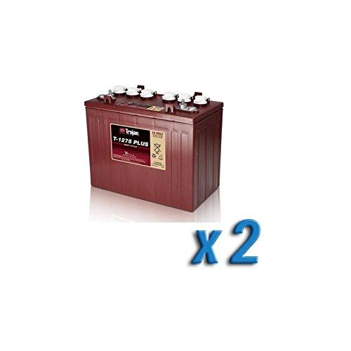 Akku 24V Photovoltaik-Accumulation T-1275 2 x 150 Ah Batterien 12V Trojan