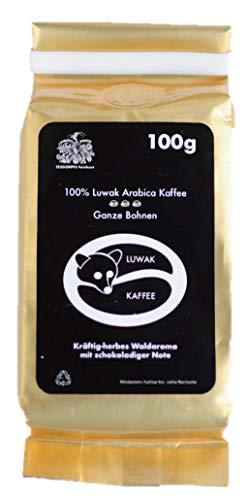 Kopi Luwak - Granos de café - El café más raro del mundo - Perfecto