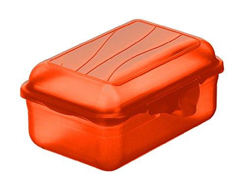 Vorratsbehälter Deckel Scharnier (Rotho 1718904036 Funbox Vesperdose Brotdose, BPA- und schadstofffrei, hergestellt in der Schweiz, circa 12.5 x 9 x 5.8 cm (LxBxH), rot Vesperbox, Plastik, Papaya Rot, 12 x 9 x 6 cm)