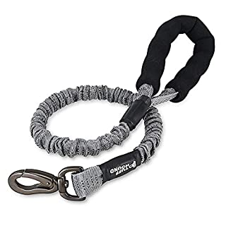 Heavy Duty Bungee Dog Lead Strong Pet Training Rope Leash for Medium and Large Dogs