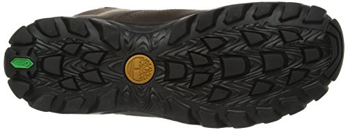 Timberland Men's Chillberg Mid Waterproof Boot,Dark Brown,10 M US marron foncé