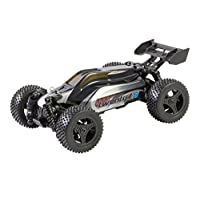XciteRC Buggy twenty4 B 30608000 V2.0 - 4WD RTR model car, silver/red